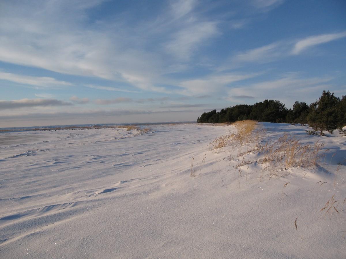 Beach. Matsirand. Holiday in Estonia, Matsi beach on winter.