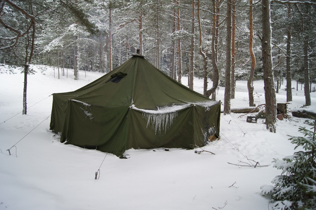 the latest eb7d1 023ef How To Buy Army Tents For Camping - Scout and Harlow